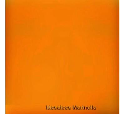 Azulejo Colorido  Cenoura